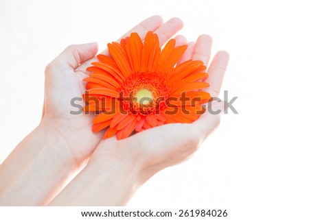 young woman holding flower in her hands, selective focus - stock photo