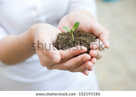 Young woman holding young plant in her hands.