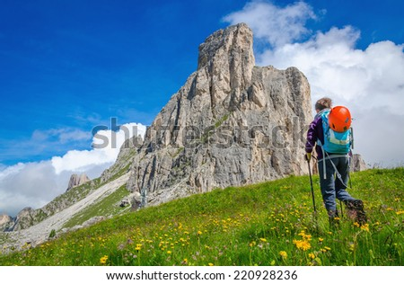 Young woman on a mountain trail, with yellow flowers and green grass, Tofane group, Dolomites Mountains, Italy - stock photo