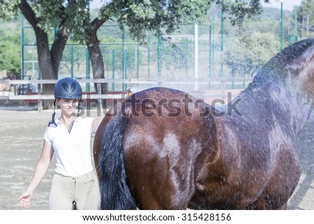 young woman rider is bathing his brown horse after a jumping session - focus on the face - stock photo