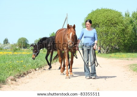 Young woman walking with chestnut horse on the countryside road - stock photo