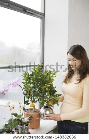Young woman watering plants at window sill in house