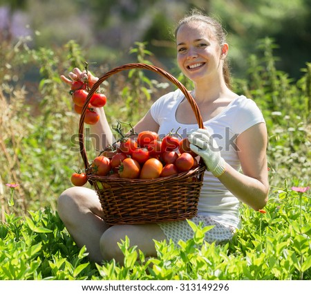 Young woman with basket of harvested tomato in garden - stock photo