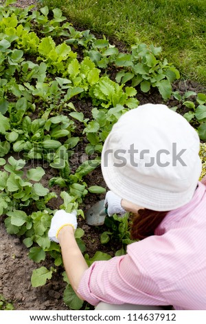 Young woman  working in the garden bed - stock photo