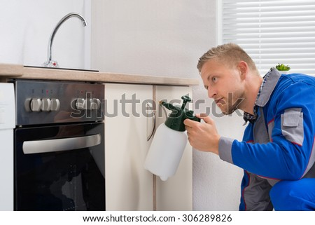 Young Worker Spraying Pesticide On Cabinet With Sprayer - stock photo