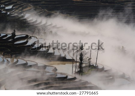 Yuanyang County is world famous for its Hani ethnic minority-constructed farming terraces that zigzag upwards over range upon range of slopes to a height of 144 to 2000 meters. - stock photo