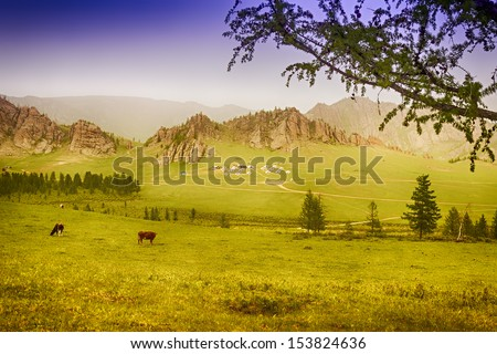 Yurt Camp in Terelj National Park Mongolia with green meadows and animals - stock photo
