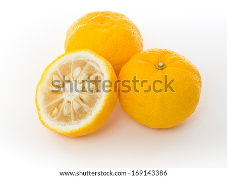 Yuzu citrus fruits famous for aromatic zest is a hybrid between Citrus ichangensis and Citrus reticulata - stock photo