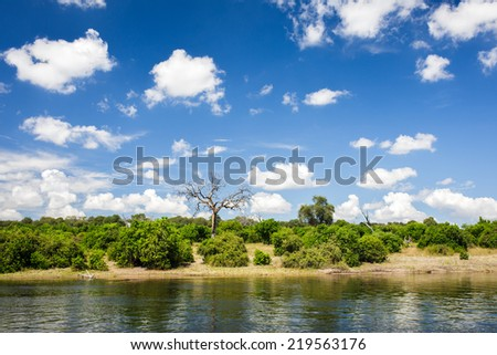 Zambezi river in Chobe National park , Botswana - stock photo