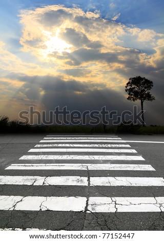 zebra crossing and sunbeam - stock photo