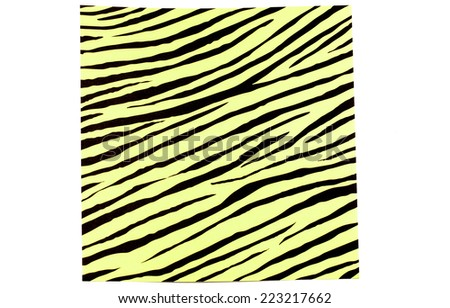 Zebra pattern - stock photo