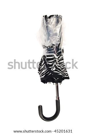 Zebra umbrella - stock photo