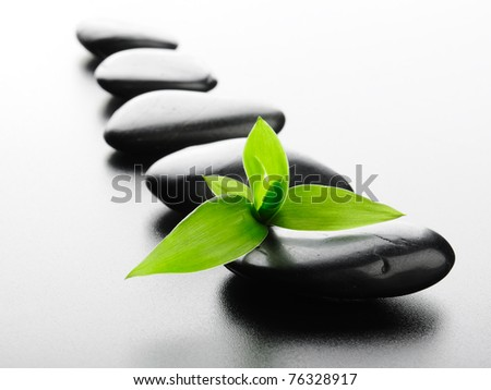 zen basalt stones and bamboo in a row - stock photo