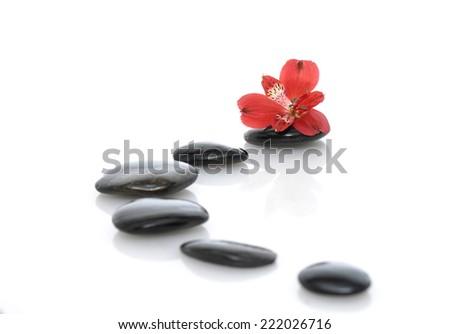 zen basalt stones and red orchid - stock photo
