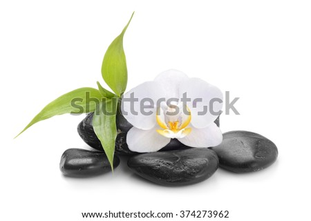 zen basalt stones ,orchid and bamboo isolated on white