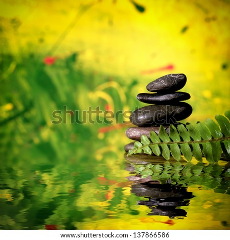 Zen dark stones and leafs of fern on green brightful background, reflecting on water surface. - stock photo