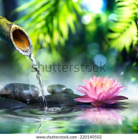 zen garden with black stones and pink waterlily  - stock photo
