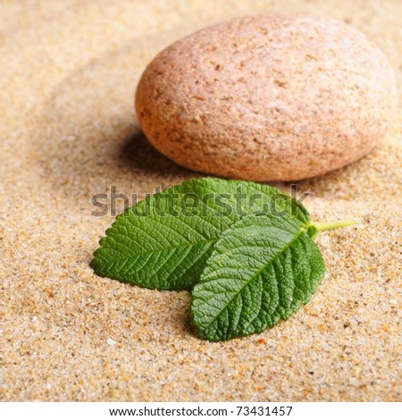 zen garden with stone or pebble on sand with leaf - stock photo