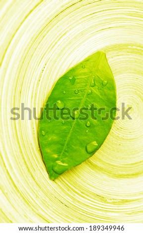 zen leaf over bamboo  - stock photo