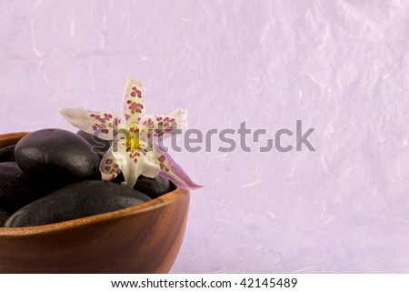 Zen-like scene with flower and candles - stock photo