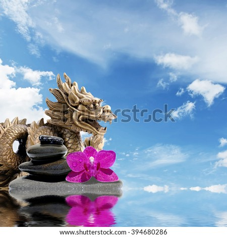 Zen or Feng-Shui background-Zen stones,orchid flowers and  Dragon reflected in water - stock photo