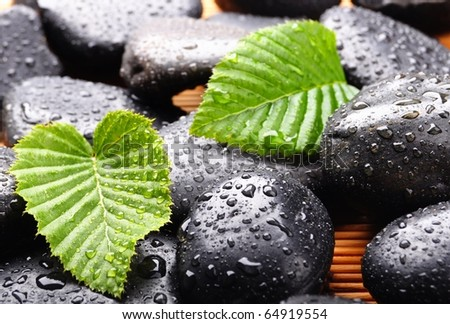 zen or spa stones with green leaf and water drops