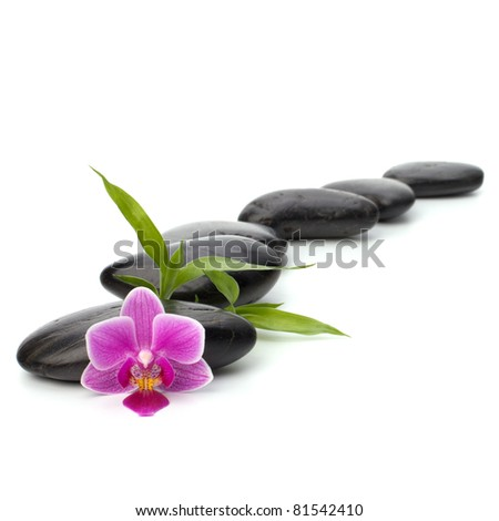 Zen pebbles path. Spa and healthcare concept. - stock photo