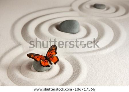 Zen rocks with butterfly - stock photo