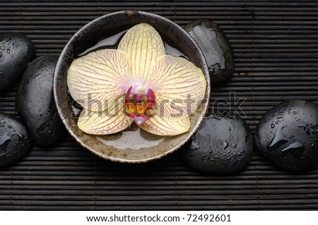 Zen Still Life â?? beautiful orchid floating in bowl with wet stones - stock photo