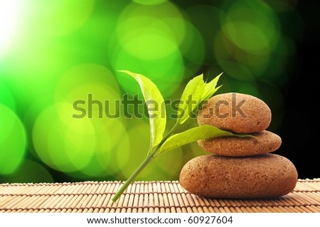 zen stone and green leaf showing spa or wellness concept - stock photo