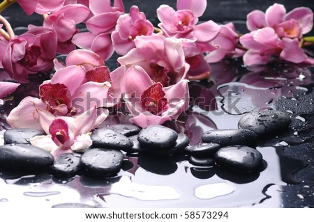 Zen stone and pink orchid with reflection - stock photo