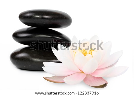 Zen stones and beautifl lotus, white background - stock photo