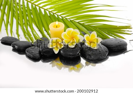 Zen stones and Frangipani and candle and palm leaf  - stock photo