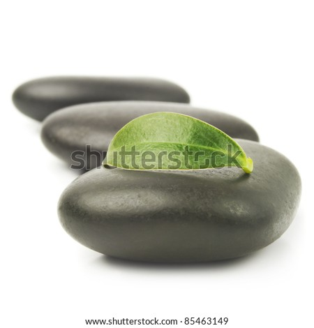 zen stones with leaves isolated