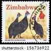 ZIMBABWE - CIRCA 1990: A stamp printed in Zimbabwe  shows Helmeted guineafowl, circa 1990 - stock photo
