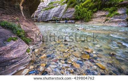 zion narrow  with  vergin river in Zion National park,Utah,usa. - stock photo