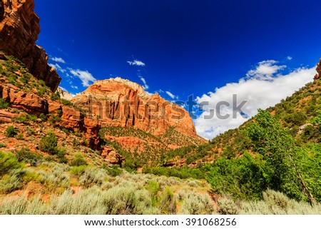 Zion National Park has many beautiful attractions, thousands of visitors come from all over the world every year. - stock photo