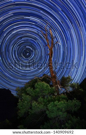 Zion National Park Long Exposure Star Trail Image - stock photo