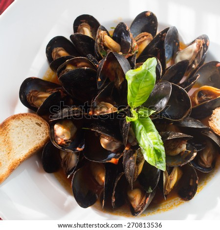 Zuppa di Cozze Fra Diavolo. Canadian mussels, spicy pomodoro sauce and garlic with grilled peasant bread - stock photo