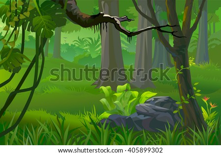 AMAZON's DEEP  TROPICAL RAIN FOREST AND TREES - stock vector