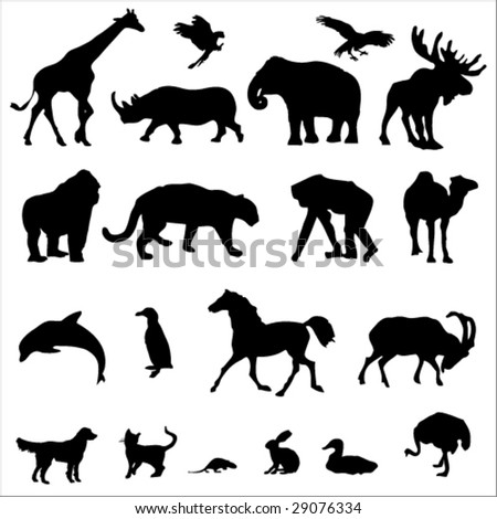 20 Animal Black Silhouette Vector Illustrations - stock vector