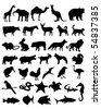 36 animal black silhouettes - stock vector