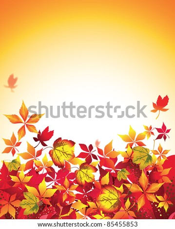 Autumn Leaves Falling.Vector Background