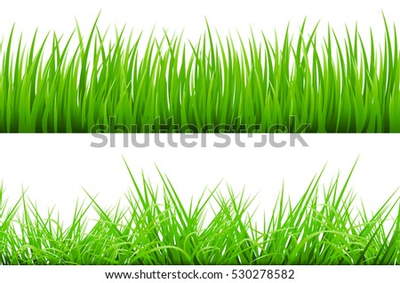 2 Backgrounds Of Green Grass, Isolated On White Background, Vector Illustration art