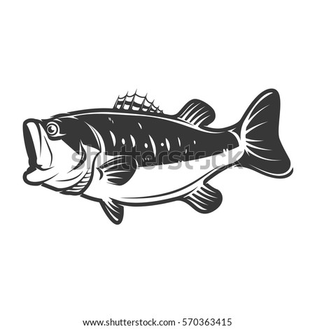 Bass Fish Icons Isolated On White Background Design Element For Logo Label Emblem
