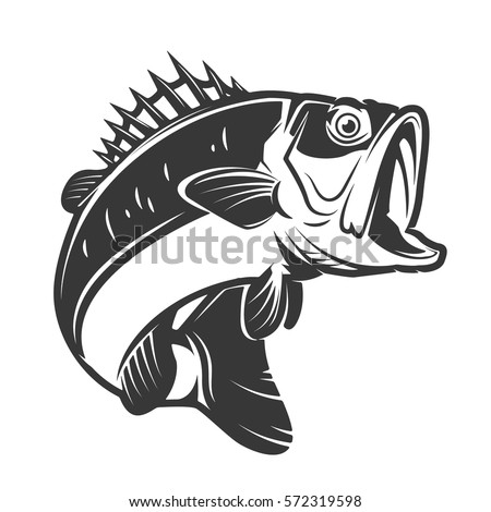 Bass Fish Icons Isolated On White 572319598