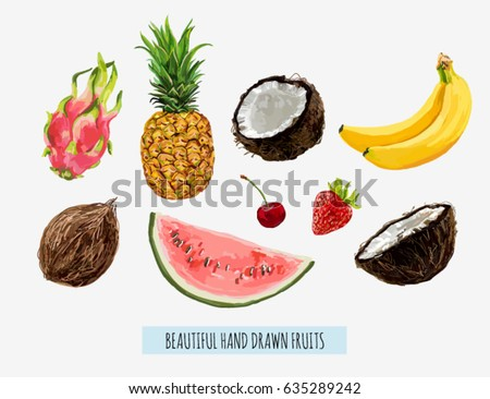 Beautiful hand drawn fruits coconut, banana, dragon fruit, cherry, watermelon, strawberry, pineapple. Seamless vector floral pattern, summer background.