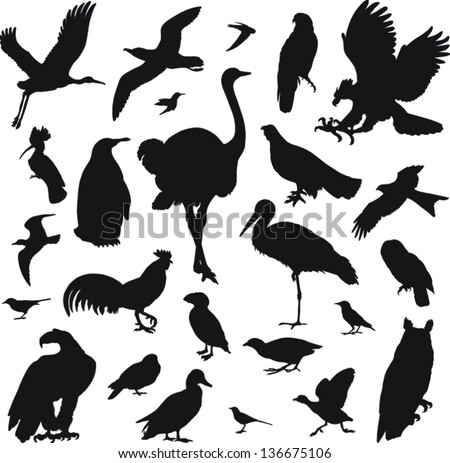 25 black icons of images of birds on a white background