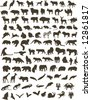 100 black silhouettes of different animals - stock vector