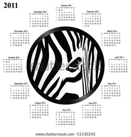 2011 calendar with a circular abstract zebra design - stock vector